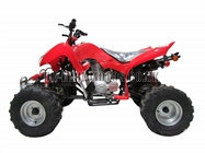 Quad Bikes - 200cc Quad Bike Red - Off Road Quads